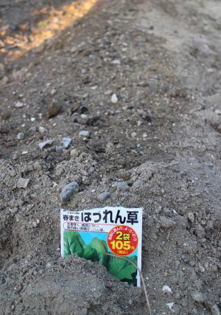 日進市の畑の撮影